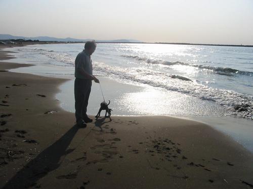 海辺にて (2004.6.18)